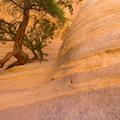 Tent Rocks, New Mexico-17