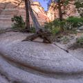 Tent Rocks, New Mexico-36